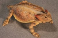 Bull Horned Lizard Hand-Painted Figurines