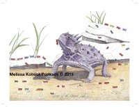 Diet of the Horned Frog (Ants)