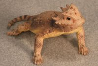 Round-Tailed Horned Lizard Hand-Painted Figurines