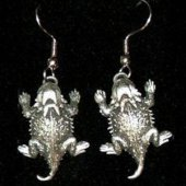 Texas Pewter Earrings
