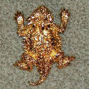 California Gold Plated Scatter Pins - Click Image to Close